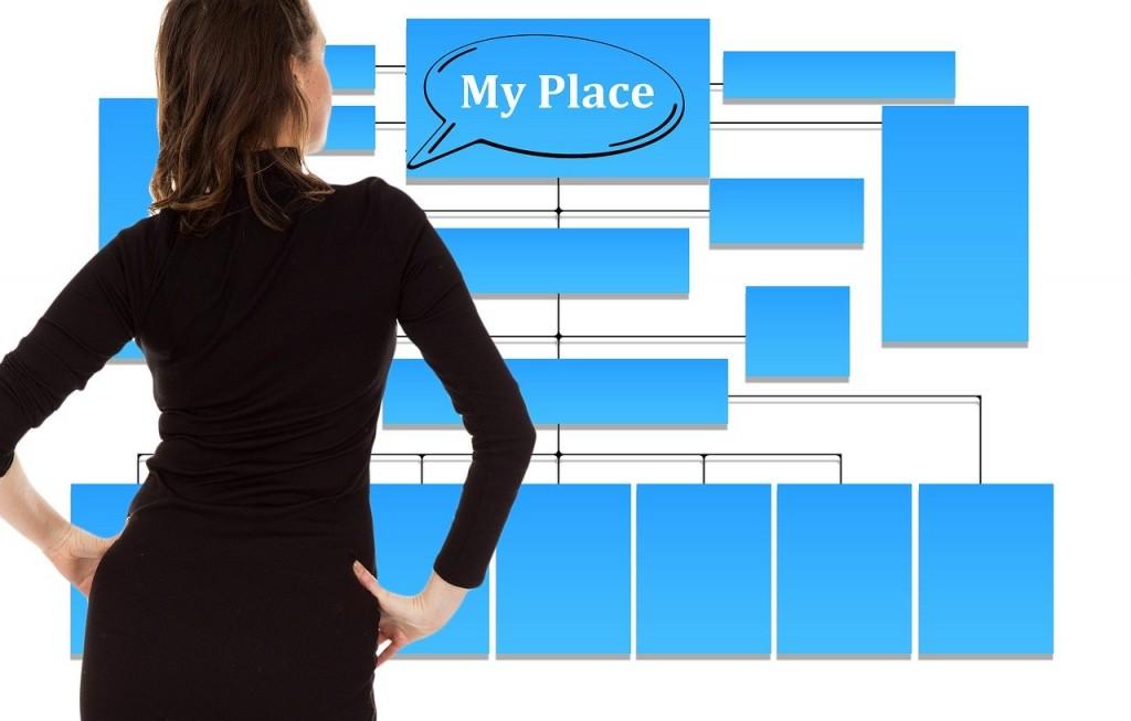 self advocacy use the organization chart